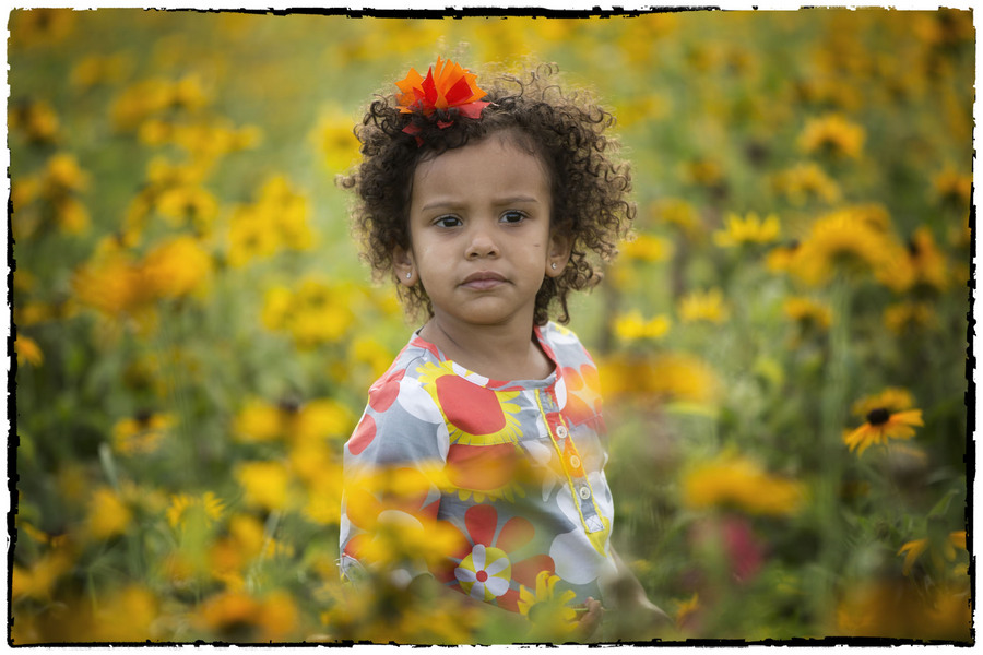 : The Sunflowers Sessions : Oklahoma City Editorial and Documentary Photographer